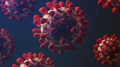 Photo of COVID-19:疫苗和治療